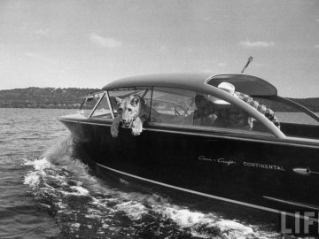 LIFE MAGAZINE – 1955 Blondie the Lion in Chris Craft on Possum Kingdom Lake